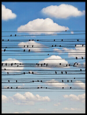 Buy this art print titled Cantus Arcticus - Concerto for Birds by the artist Jared Lim