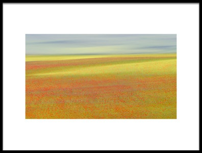 Buy this art print titled Castelluccio Colors by the artist Roberto Marchegiani