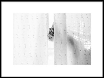 Art print titled Cat Peeking Behind a Curtain by the artist Oranit Turgeman