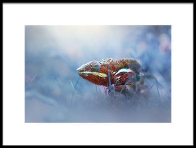 Buy this art print titled Chameleon Phanter by the artist andri priyadi