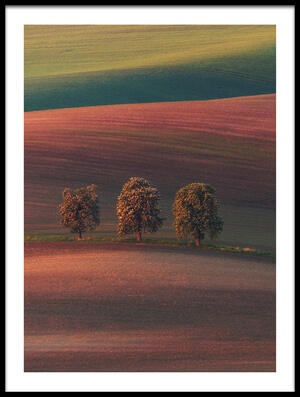 Buy this art print titled Chestnut Avenue by the artist Ales Krivec