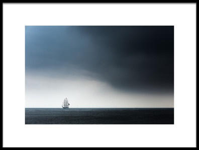 Buy this art print titled Cisne Branco by the artist Ton Drijfhamer