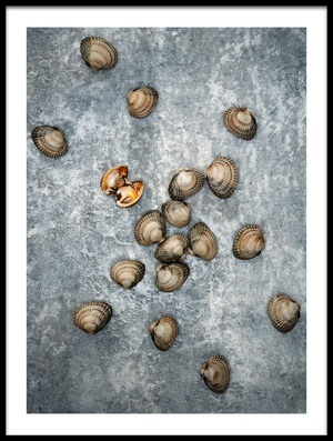 Art print titled Clams by the artist Bsmart