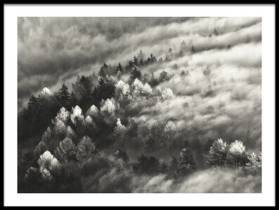 Buy this art print titled Cloudy Forest by the artist Samir Pajić
