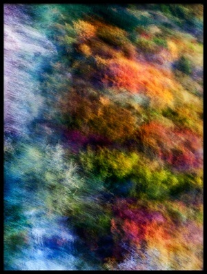 Buy this art print titled Colorful Forest by the artist Wei He