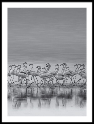 Buy this art print titled Comrades by the artist Ahmed Thabet