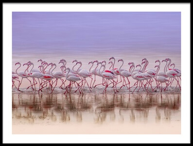 Art print titled Comrades In Color by the artist Ahmed Thabet