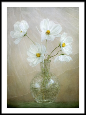 Art print titled Cosmos Breeze by the artist Mandy Disher