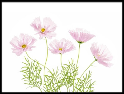 Art print titled Cosmos Cupcake by the artist Mandy Disher