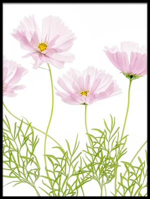 Art print titled Cosmos Cupcake III by the artist Mandy Disher