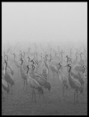 Art print titled Cranes by the artist keren or