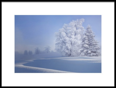 Art print titled Crispy Morning by the artist VéroniqueS