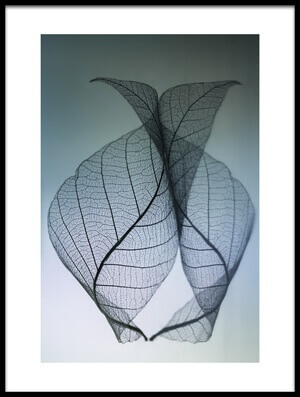Buy this art print titled Curvaceousness by the artist Shihya Kowatari
