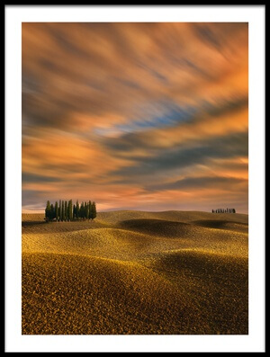 Art print titled Cypresses by the artist Krzysztof Browko