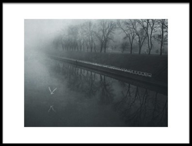 Art print titled Days of Mist by the artist nicoleta gabor