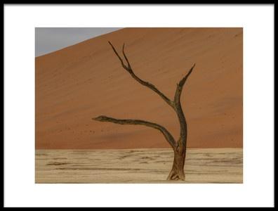 Art print titled Deadvlei, Sossusvlei, Namibia by the artist Mariana van der Walt