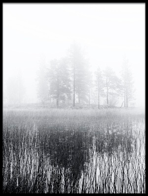 Art print titled Deep Bog by the artist Julien Oncete