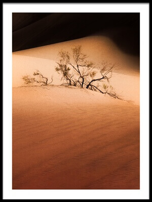Art print titled Deserted Bush by the artist Ramin Amani