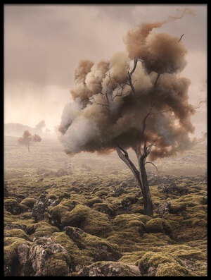 Art print titled Desolation by the artist Matthias Bergolth