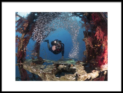 Art print titled Diver and Pygmy Sweepers by the artist Ilan Ben Tov