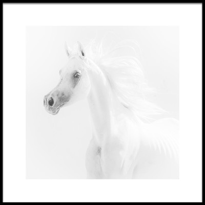 Art print titled Dream Horse by the artist Alaa El Deeb