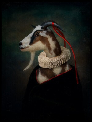 Buy this art print titled Dressed Up Goat by the artist Svetlana Melik-Nubarova