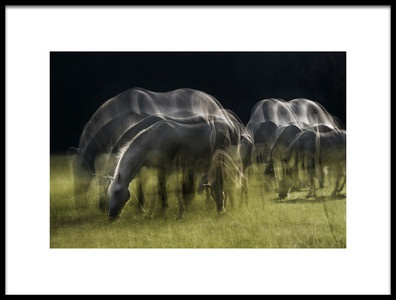 Art print titled Echoes of Light by the artist milan malovrh
