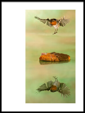 Art print titled El Angel by the artist paco fernandez
