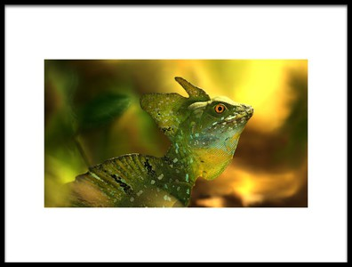 Art print titled El Basilisco Verde by the artist Jimmy Hoffman