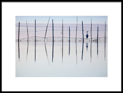 Buy this art print titled El Saler by the artist Vicente Dolz