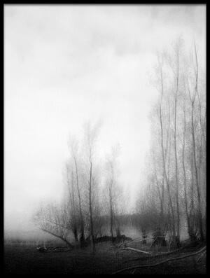 Art print titled End of Wintertime by the artist Jacqueline van Bijnen
