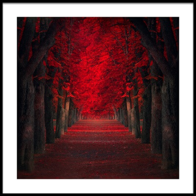 Art print titled Endless Passion by the artist Ildiko Neer