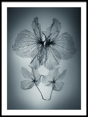 Buy this art print titled Ephemeral Beauty by the artist Shihya Kowatari