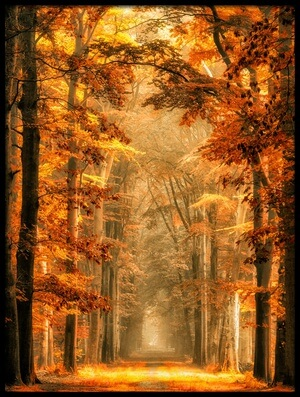 Buy this art print titled Exit the Portal by the artist Lars van de Goor
