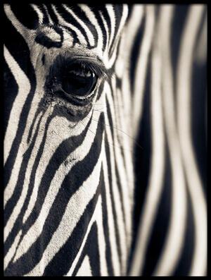 Art print titled Eye & Stripes by the artist Mario Moreno