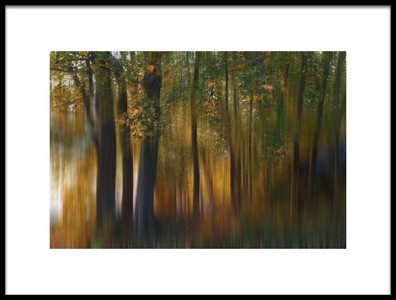 Art print titled Fall Impression 1 by the artist 李从军 / Austin Li