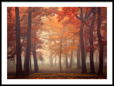 Art print titled Feel by the artist Ildiko Neer
