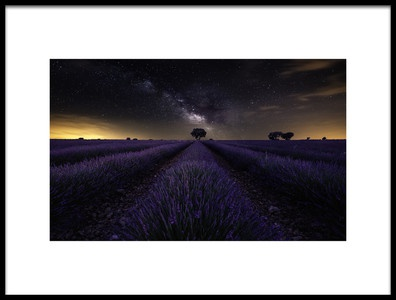 Buy this art print titled Fields of Castilla by the artist Jorge Ruiz Dueso