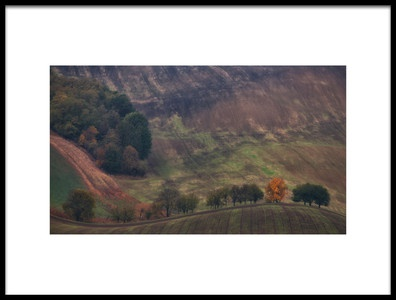 Art print titled Fire In the Field by the artist Rok Godec