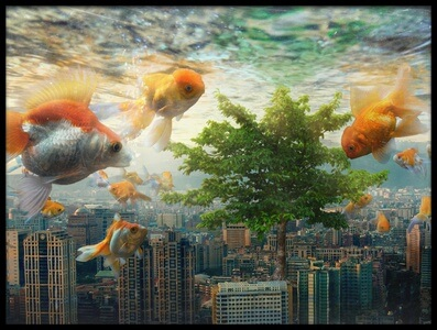 Buy this art print titled Fish Tank by the artist Andrew Kow