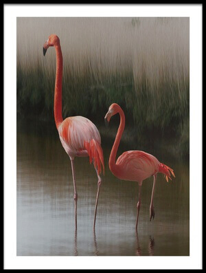 Art print titled Flamingos by the artist Anna Cseresnjes