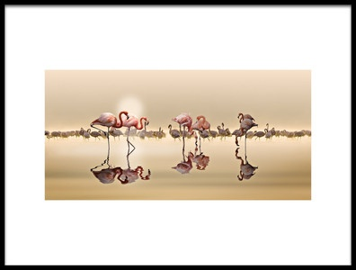 Art print titled Flamingos by the artist NASSER OSMAN