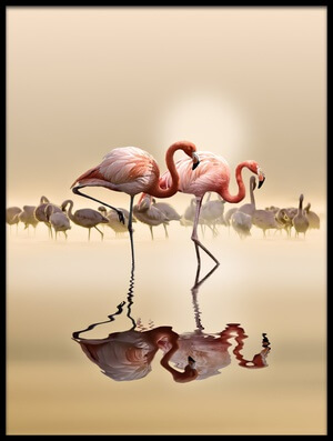 Buy this art print titled Flamingos Ii by the artist NASSER OSMAN