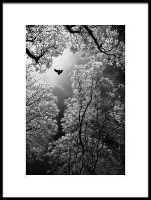 Buy this art print titled Flight by the artist Goran Stamenkovic