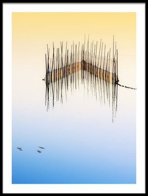 Art print titled Flight On Lake by the artist Juan Luis Duran