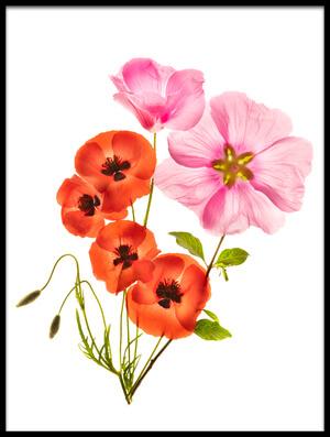 Art print titled Flower Composition III by the artist Azriel Yakubovitch