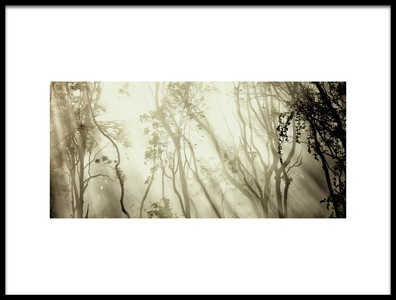 Buy this art print titled Fog by the artist Jorge Feteira
