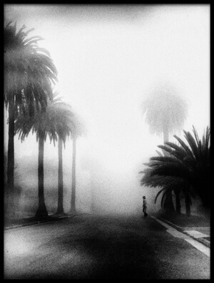 Buy this art print titled Fog by the artist Roxana Labagnara