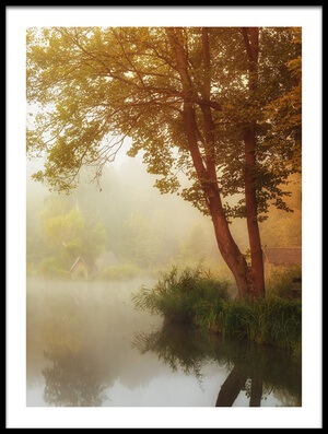 Art print titled Foggy Autumn by the artist Leicher Oliver