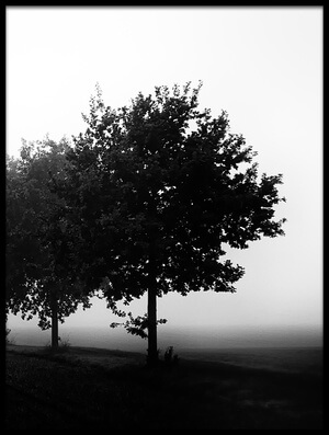 Buy this art print titled Foggy Day by the artist Oliver Buchmann